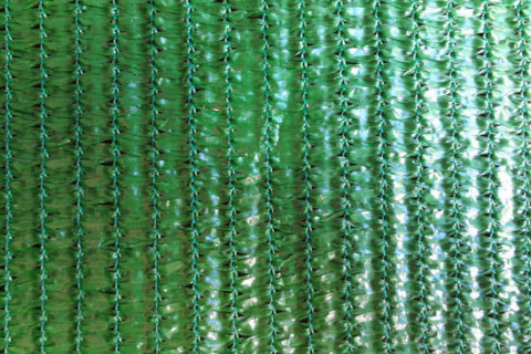 greenhouse cloth supplier, greenhouse cloth manufacturer, greenhouse cloth wholesale, cloth green house supplier, cloth green house manufacturer,затеняющие сетки поставщик, Lưới chắn gió, Lưới che nắng sợi dẹp, Lưới che nắng sợi tròn, bat che, LƯỚI BAO CHE, shade net, shade net supplier, shade net manufacturers, shade net factorys, shade netting suppliers, shade netting manufacturers, agriculture shade net suppliers, agriculture shade net manufacturers, agriculture shade net factorys, garden shade net supplier, garden shade net manufacturers, agro shade net, agro shade net suppliers, agro shade net manufacturers, L'agriculture d'ombrage , d'ombrage, Schatten - Netz , Schattennetz, Schattiergewebe, Agriculture malla, sombra , agricultura malla sombra , Mallas de sombreo Agrícolas Proveedor, затеняющие сетки, HDPE shade net manufacturer, HDPE shade netting, greenhouse shade net manufacturer, green house shade cloth supplier, sun shade net, sun shade net suppliers, sun shade net manufacturers, sun shade net factorys,