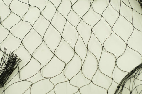 bird netting suppliers, knotted bird netting, knoteed bird netting supplier, bird netting manufacturer, anti bird netting supplier, anti bird net supplier, bird net supplier, bird mesh supplier, black bird netting supplier,bird control netting supplier, bird control net supplier, bird control mesh suppleir,bird netting supplier,